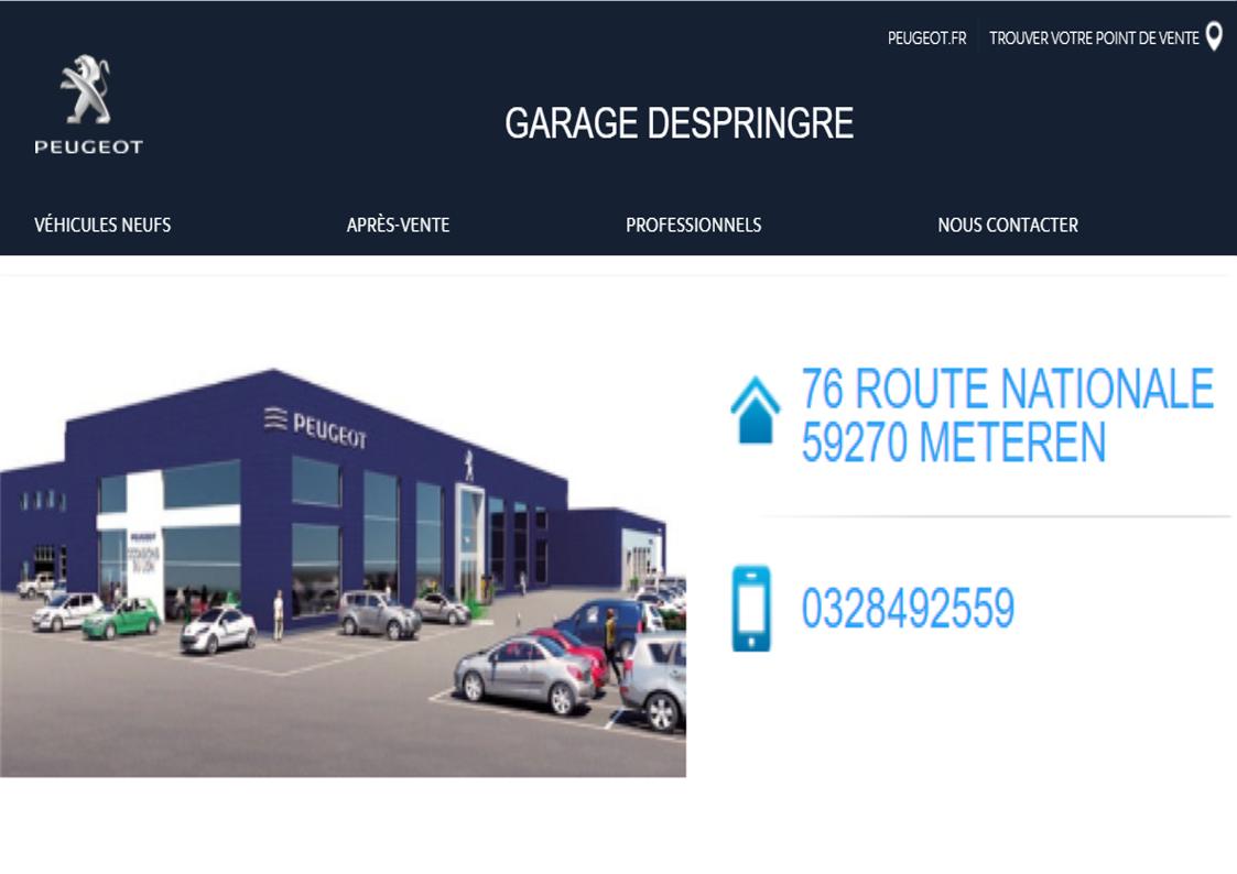 garage despringue